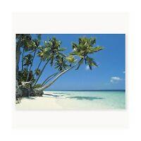 1 X Tropical Beach Backdrop Banner Luau Photo Booth Decorati Free Shipping