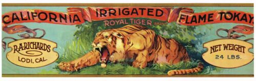 ORIGINAL GRAPE CRATE LABEL VINTAGE LODI C1920S ROYAL TIGER WILD CAT BEAST