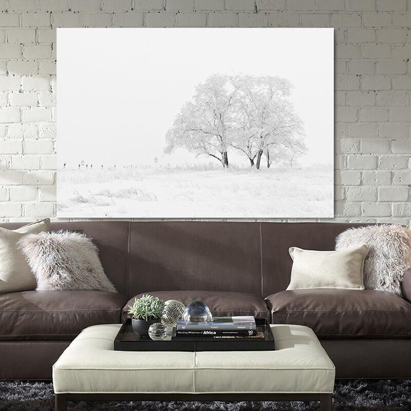 3DWeiße Bäume Schnee 53 Fototapeten Wandbild BildTapete Familie AJSTORE DE
