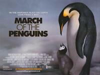 March Of The Penguins Movie Poster (original Uk Quad) 30 X 40 Inches