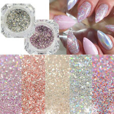 Holographic Nail Art Glitter Powder Dust UV Gel Acrylic Sequins Manicure Tips