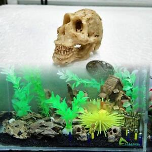 Halloween aquarium decorative resin skull crawler dragon for Halloween fish tank decorations