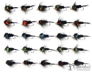 Holographic Diawl Bach Nymph/'s Trout Flies for Fly Fishing Waterproof Fly Box