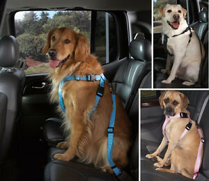 Car-Safety-Harness-for-Dogs-USA-Seller-Seat-Belt