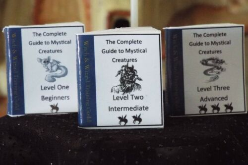 Mini HALLOWEEN  Witches /& Wizards Mystical Creature Book  Dollhouse  1:12 scale