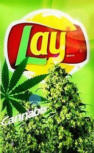 how to get free marijuana stickers