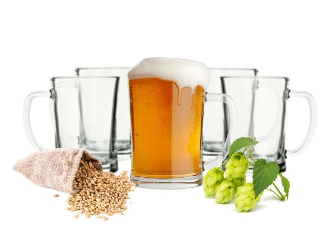 6 Danubia Bierseidel geeicht Bierglas Bierkrug Borgonovo Henkel 0,3l 37cl