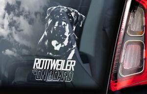 Rottweiler-a-Bordo-Coche-Ventana-Pegatina-Rottie-Beware-Of-Perro-Signo-V05