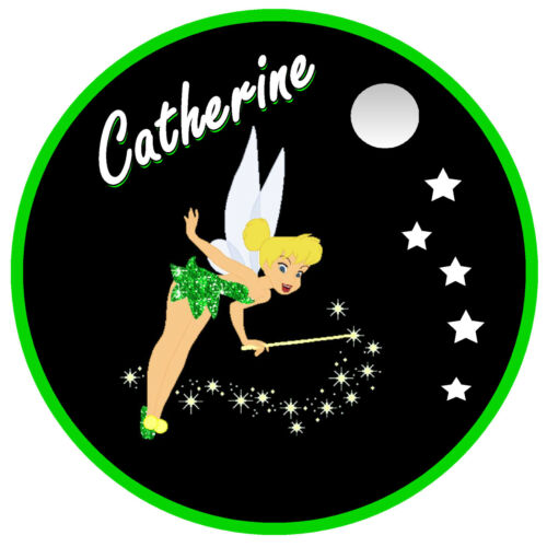 GIFT TINKERBELL NEW PERSONALISED FUN CAR TAX DISC HOLDER NAME REUSABLE