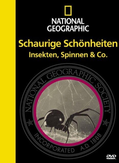 National Geographic - Schaurige Schönheiten: Insekten, Spinnen & Co.