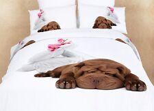 Dorm Room Girls Bedding Set Twin XL 100% Egyptian Cotton 4 Piece Git Set DM489T