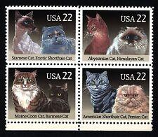 USA - STATI UNITI - 1988 - Fauna - Gatti di razza