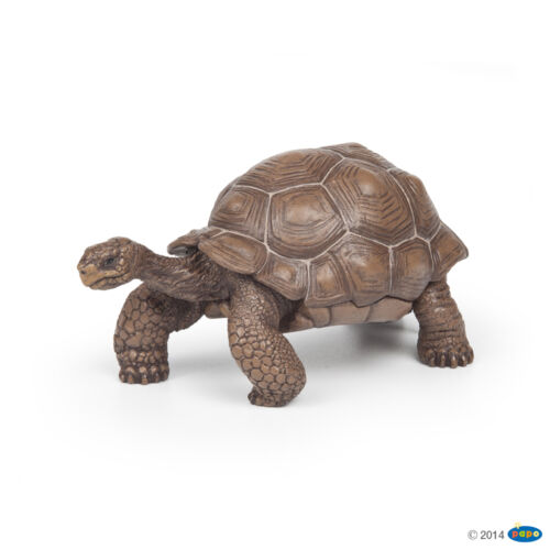 Papo 50161 Galápagos Galapagos Giant Tortoise 3 7//8in Wild Animals