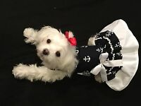 Xxsmall Sailor Girl Dress - Dog Dress Clothes-puppy Apparel