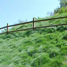 Creeping Red Fescue Grass Seed (Festuca rubra) Shade Tolerant - 1 Lb.