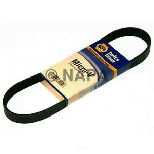 NAPA AUTOMOTIVE 25-060495 Replacement Belt