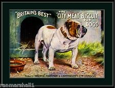 English Print Bull Dog Bulldog Dogs Puppy Biscuit Ad Art Picture Vintage Poster