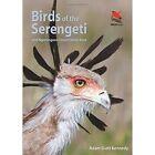 Birds of the Serengeti: and Ngorongoro Conservation Area by Adam Scott Kennedy (Paperback, 2014)