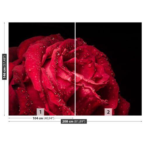 Vlies-Fototapete Fototapeten Tapete aus Vlies Poster Foto Rote Rose