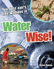 Water Wise!: Age 9-10, Average Readers by Alison Hawes (Paperback, 2010)