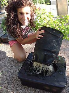 Octopot Soil Hydro Hybrid Grow Systems 6 Gallon Size CASE of 6 Volume DISCOUNT