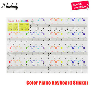 Muslady-Transparent-Removable-Keyboard-Piano-Stickers-88-61-54-49-37-Keys-E9C7