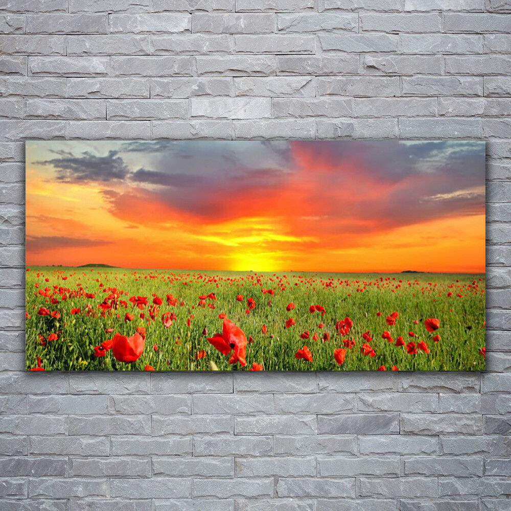 Verre Imprimer Wall Art Image 120x60 PHOTO COQUELICOTS Soleil Nature