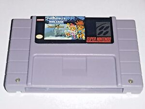 Crystal-Beans-From-Dungeon-Explorer-game-For-SNES-Super-Nintendo