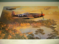 Mustangs over the Mediterranean Nicolas Trudgian P-51 31st Fighter group 1944