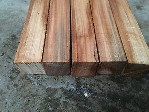 1-Elm-wood-pen-turning-Blanks