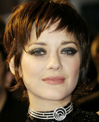 marion cotillard inception hair