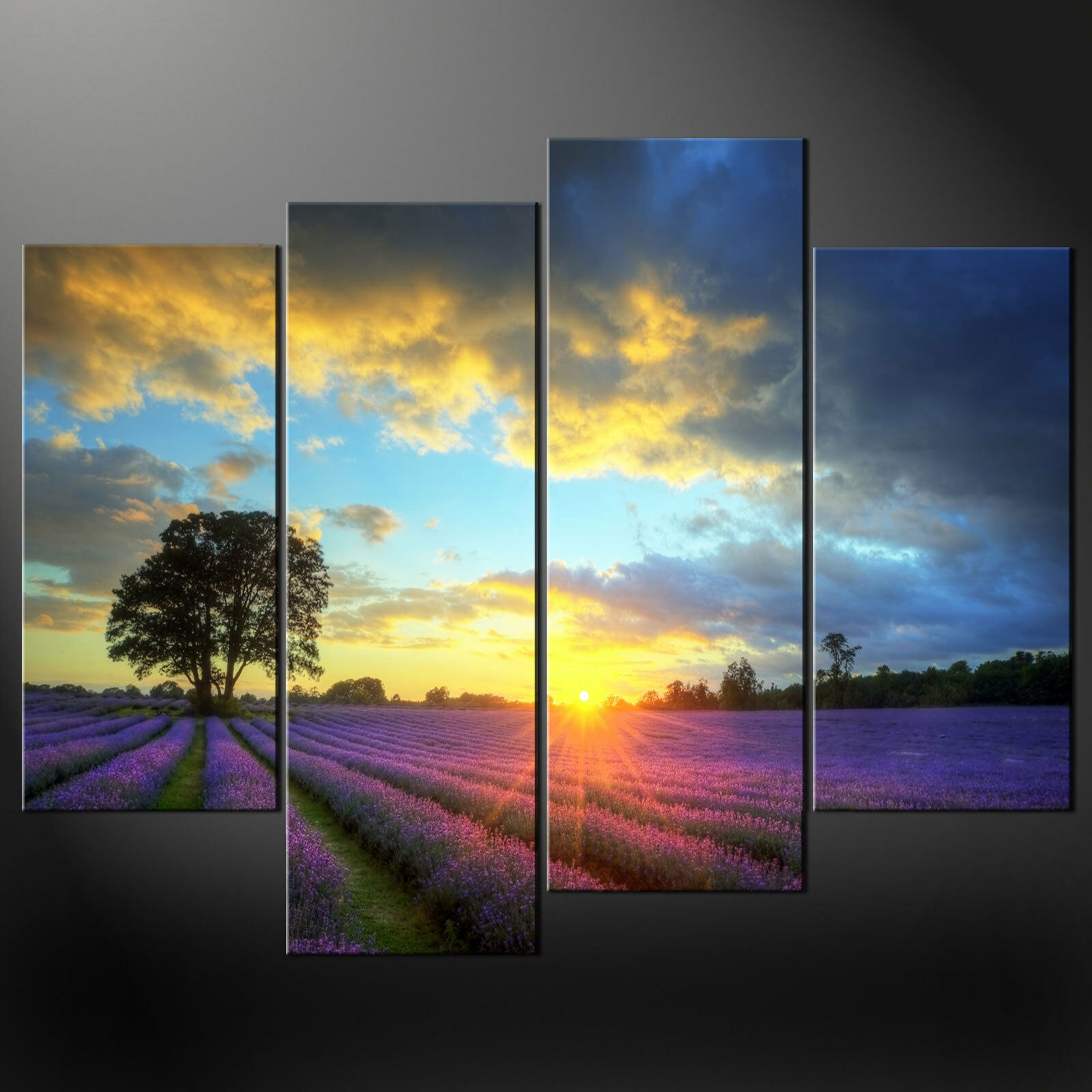SUNRISE lila LAVENDERS CANVAS PRINT PICTURE WALL ART ART ART VARIETY OF GrößeS SET OF 4 95f190