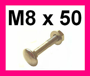 Stainless-Carriage-Bolts-Nuts-amp-Washers-M8x50-4-Pk
