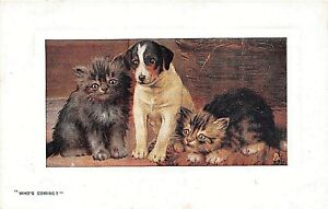 POSTCARD-CATS-IN-PUSSYLAND-034-WHO-039-S-COMING-034-TUCK