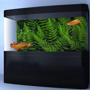 Details About Hd Fern Leaves Aquarium Background Poster Pvc Reptile Vivarium Decorations