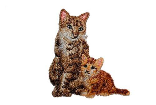6,1 cm Bügelbild application PETIT BABY ANIMAL ANIMAUX K Chat avec Garçon 5,7 cm