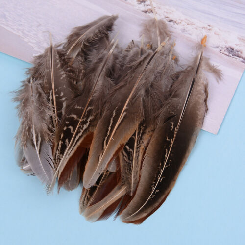 50pcs//set pheasant feathers 5-10cm chicken plumes for carnival diy craft decor