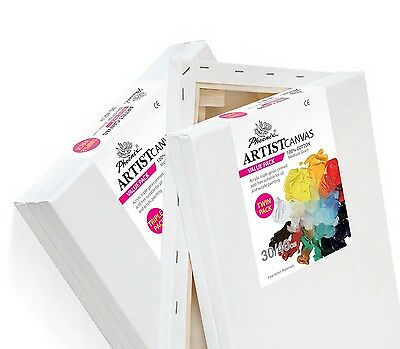 AS5308SB2 Phoenix® Artist Cotton Value Pack Two Stretched Painting Canvas 8x10