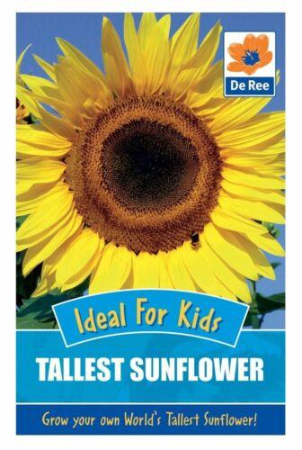 De Ree Seeds Collections Flower Seeds Tallest Sunflower