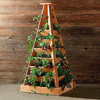 Gärtner Pötschke Pflanz-Pyramide, Höhe 120 cm, Breite 56 cm, Länge 56 cm