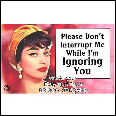 "Fridge Fun Refrigerator Magnet ""PLEASE DONT INTERRUPT ME..."" Funny Retro"