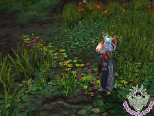 Path of Cenarius Loot Card World Warcraft Flower Footstep Fields Honor WoW TCG