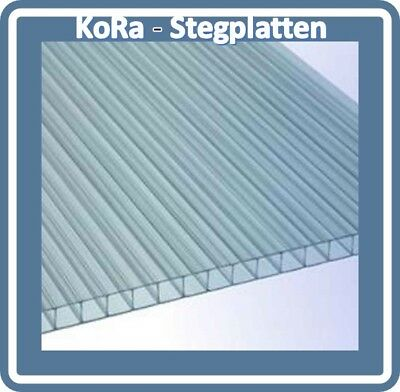 1500mm x 698mm Polycarbonat 2-fach Doppelstegplatten//Hohlkammerplatte,10mm,klar