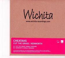 (DZ303) Cheatahs, Cut The Grass - 2013 DJ CD