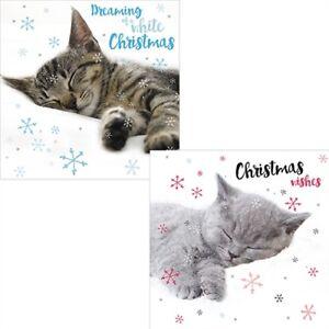 LUXURY-Christmas-Cards-Pack-10-Festive-Tabby-Cat-Naps-amp-Snoozing-Kittens