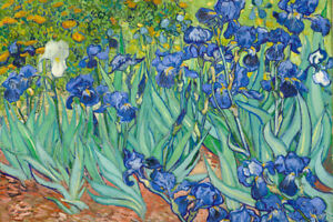 Vincent-Van-Gogh-Irises-1890-Flowers-Art-Print-Poster-36x24-inch