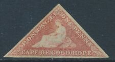 SG 5 Cape fo good hope 1855 63 1d Rose mounted mint good margins CAT £850