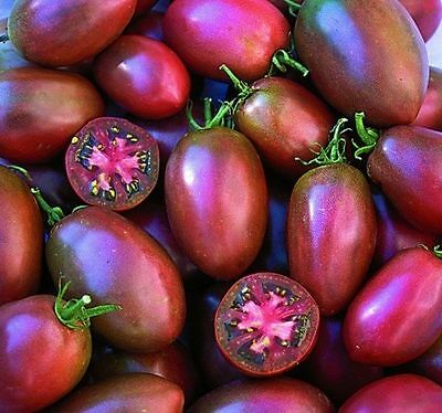 VEGETABLE TOMATO UKRANIAN PURPLE 75 FINEST SEEDS