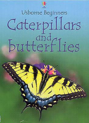 """AS NEW"" Caterpillars and Butterflies (Beginners), Turnbull, Stephanie, Book"