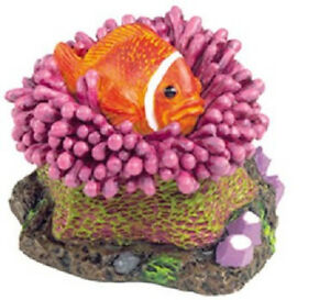 "Aquariophilie, Bassins, Mares Confident Ruban Bleu Éxotique Eau Kritter Poisson Clown Décoration Miniature 2.5 "" Usa"